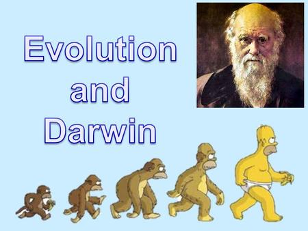 Evolution The processes that have transformed life on earth from it's earliest forms to the vast diversity that characterizes it today. A change in the.