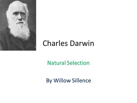 darwin and malthus comparison and What is the difference between darwin and lamarck • darwin was an english scientist while lamarck was a french biologist • darwin proposed that evolution takes place by means of natural selection as the fittest one survives.