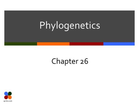 Phylogenetics Chapter 26. Slide 2 of 17 Ontogeny recapitulates Phylogeny  Ontogeny – development from embryo to adult  Phylogeny – evolutionary history.