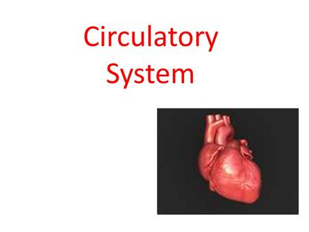 Circulatory System. Go with the Flow! The Circulatory System moves fluids around the body and protects it from disease. Video.
