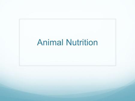 Animal Nutrition. nutrition Food taken in, taken apart and taken up Herbivores – plants/algae Carnivores – eat other animals Omnivores – consume animals.