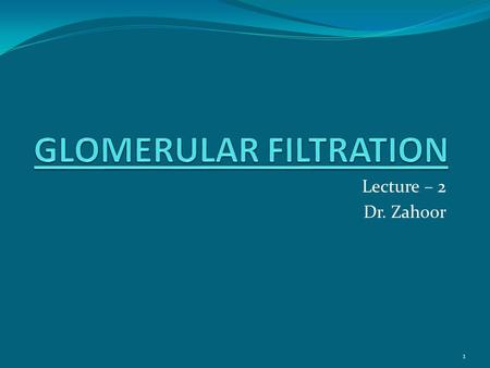 Lecture – 2 Dr. Zahoor 1. Basic Renal Processes Glomerular filtration Tubular reabsorption Tubular secretion Urine results from these three processes.