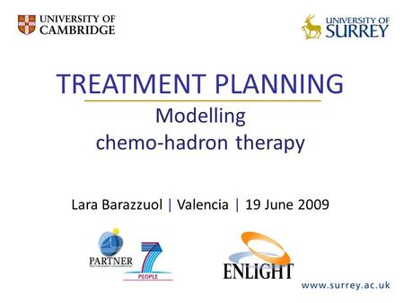 TREATMENT PLANNING Modelling chemo-hadron therapy Lara Barazzuol | Valencia | 19 June 2009.