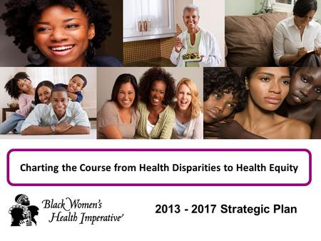 Charting the Course from Health Disparities to Health Equity 2013 - 2017 Strategic Plan.