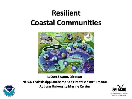Resilient Coastal Communities LaDon Swann, Director NOAA's Mississippi-Alabama Sea Grant Consortium and Auburn University Marine Center.