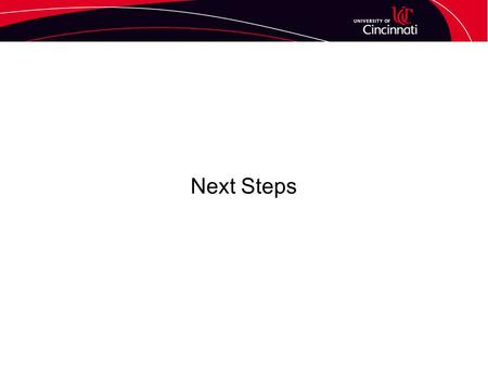 Next Steps. Implementation Timeline Timeline Operational & revenue goals Expenses Who does what.
