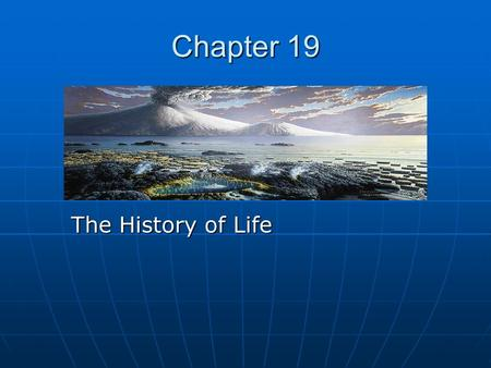 Chapter 19 The History of Life. The Fossil record Palentologists study fossils Palentologists study fossils These records provided evidence about the.