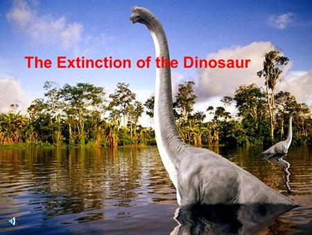 The Extinction of the Dinosaur. Dinosaurs came in many shapes and sizes.