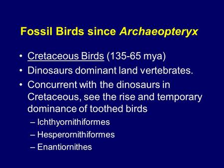 Fossil Birds since Archaeopteryx Cretaceous Birds (135-65 mya) Dinosaurs dominant land vertebrates. Concurrent with the dinosaurs in Cretaceous, see the.