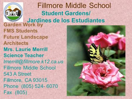 Fillmore Middle School Student Gardens/ Jardines de los Estudiantes Garden Work by FMS Students Future Landscape Architects Mrs. Laurie Merrill Science.