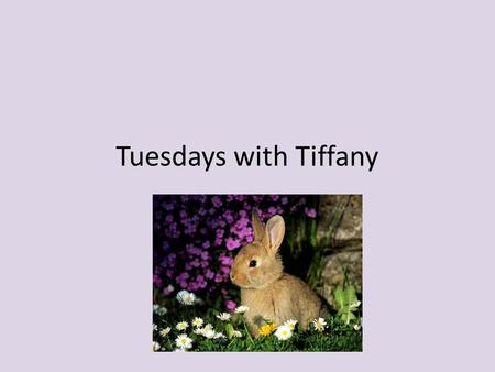 Tuesdays with Tiffany. Life Lessons These are some words of advice and some life lessons that have helped me through life. Now I am passing them on to.