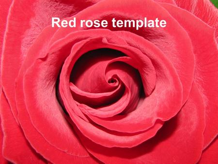 Red rose template Example bullet point slide Bullet point –Sub Bullet.