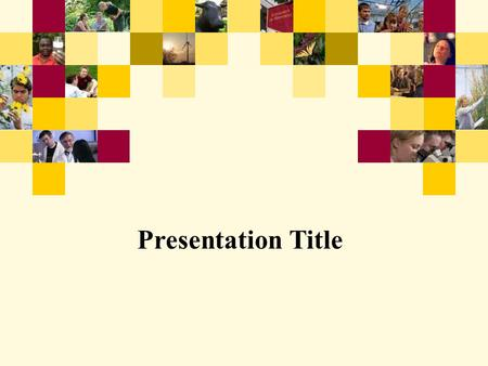 Presentation Title. 2 Example: Section Divider Page Subtext (arial, bold, font size 22)