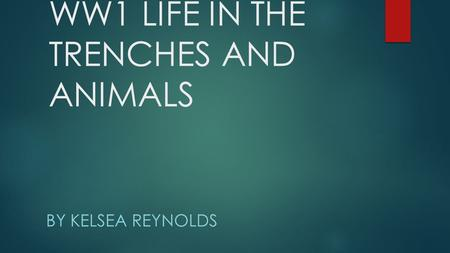 WW1 LIFE IN THE TRENCHES AND ANIMALS BY KELSEA REYNOLDS.