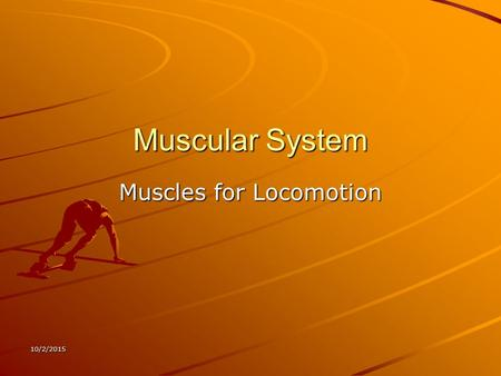 10/2/2015 Muscular System Muscles for Locomotion.