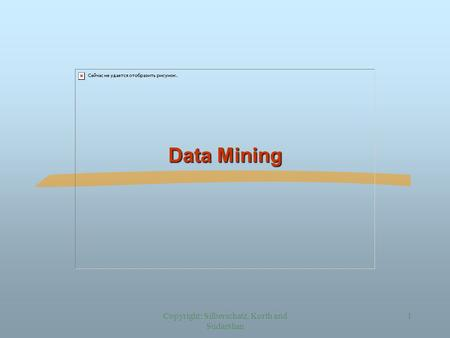 Copyright: Silberschatz, Korth and Sudarshan 1 Data Mining.
