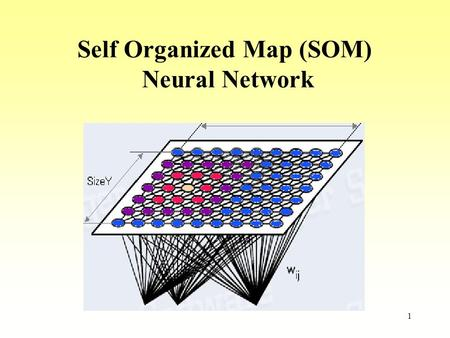 Self Organized Map (SOM)