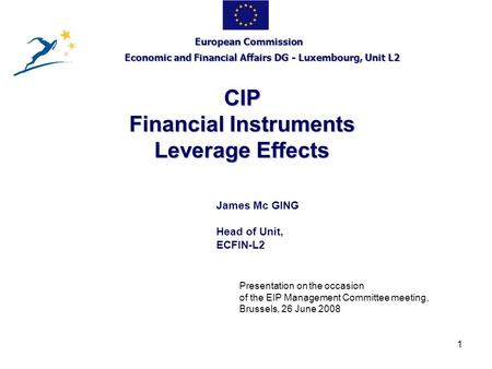 1 CIP Financial Instruments Leverage Effects European Commission Economic and Financial Affairs DG - Luxembourg, Unit L2 James Mc GING Head of Unit, ECFIN-L2.