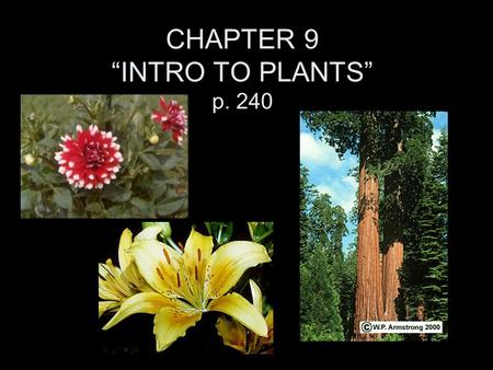 "CHAPTER 9 ""INTRO TO PLANTS"" p. 240 Plants -285,000 + species of plants. -All have tissues and ""organs"". Plants must have: cell walls -for support. chloroplasts."