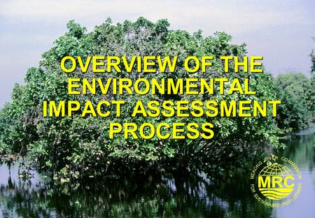 OVERVIEW OF THE <strong>ENVIRONMENTAL</strong> IMPACT ASSESSMENT PROCESS.
