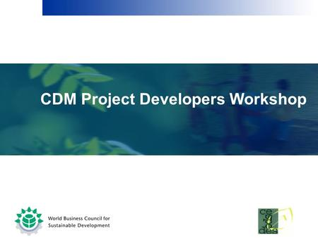 CDM Project Developers Workshop.  Boundaries & Leakage  Calculating emissions reductions  Any other issues Session II.