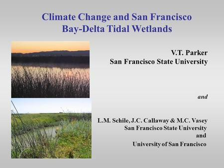 Climate Change and San Francisco Bay-Delta Tidal Wetlands V.T. Parker San Francisco State University and L.M. Schile, J.C. Callaway & M.C. Vasey San Francisco.