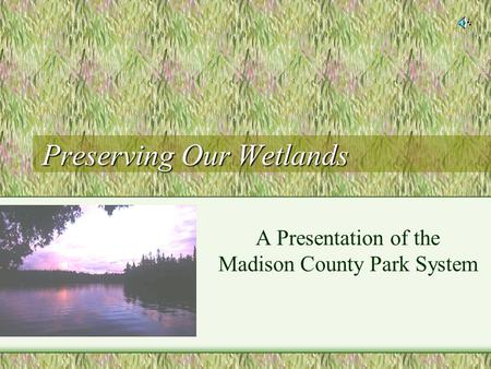 Preserving Our Wetlands A Presentation of the Madison County Park System.