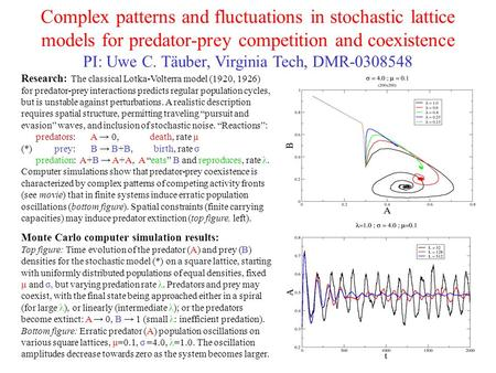 Complex patterns and fluctuations in stochastic lattice models for predator-prey competition and coexistence PI: Uwe C. Täuber, Virginia Tech, DMR-0308548.