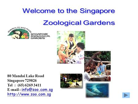 80 Mandai Lake Road Singapore 729826 Tel : (65) 6269 3411