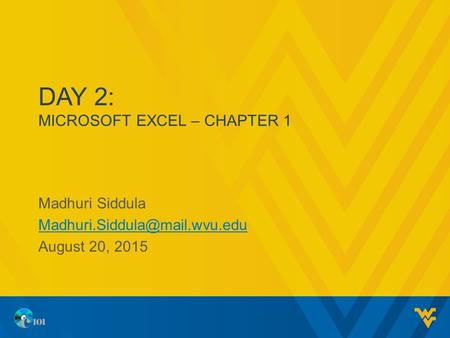 DAY 2: MICROSOFT EXCEL – CHAPTER 1 Madhuri Siddula August 20, 2015.