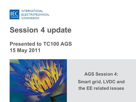INTERNATIONAL ELECTROTECHNICAL COMMISSION Copyright © IEC, Geneva, Switzerland Session 4 update Presented to TC100 AGS 15 May 2011 AGS Session 4: Smart.