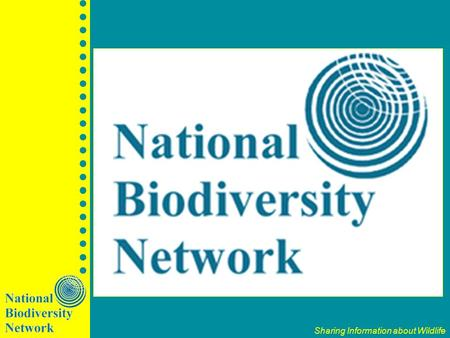 Sharing Information about Wildlife. National Biodiversity Network Trust A new way of sharing wildlife information in the UK using the Internet A partnership.