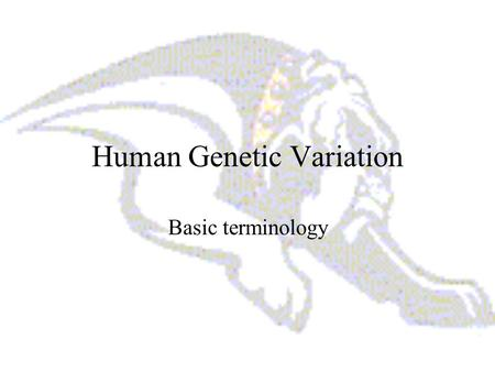 Human Genetic Variation Basic terminology. What is a gene? A gene is a functional and physical unit of heredity passed from parent to offspring. Genes.