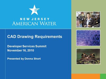 CAD Drawing Requirements Developer Services Summit November 16, 2010 Presented by Donna Short.