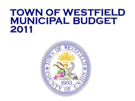 Significant revenue declines and the need for significant appropriation reductions to balance the budget have been the main focus of the 2011 municipal.