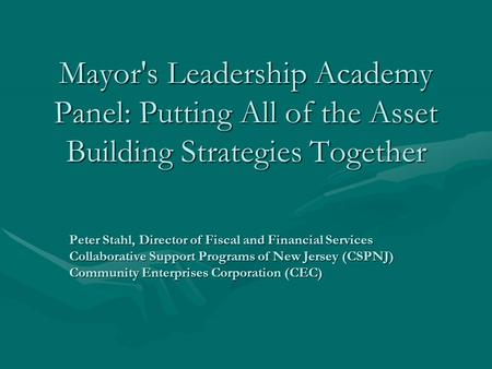 Mayor's Leadership Academy Panel: Putting All of the Asset Building Strategies Together Peter Stahl, Director of Fiscal and Financial Services Collaborative.
