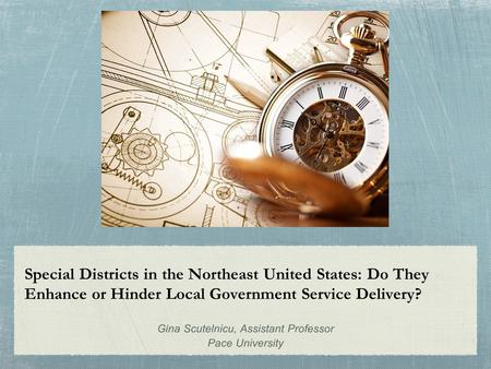Special Districts in the Northeast United States: Do They Enhance or Hinder Local Government Service Delivery? Gina Scutelnicu, Assistant Professor Pace.