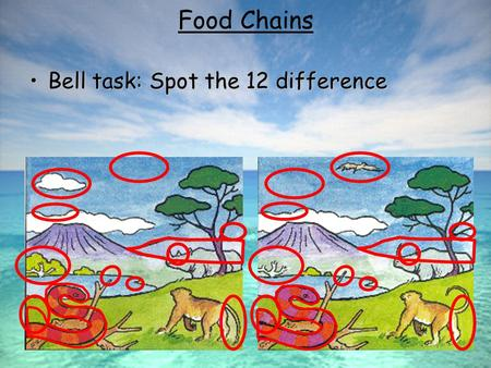 Bell task: Spot the 12 differenceBell task: Spot the 12 difference Food Chains.