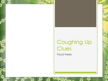 Coughing Up Clues Food Webs. Coughing Up Clues 5/16/13 Key Question: How can you tell the interactions between organisms in an ecosystem? Initial Thoughts: