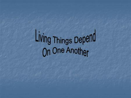 Living Things Depend On One Another.