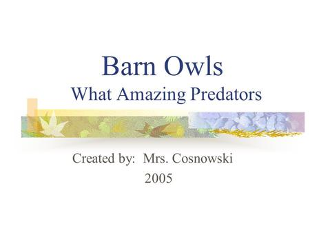 Barn Owls What Amazing Predators Created by: Mrs. Cosnowski 2005.