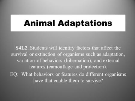 Animal Adaptations S4L2. Students will identify factors that affect the survival or extinction of organisms such as adaptation, variation of behaviors.