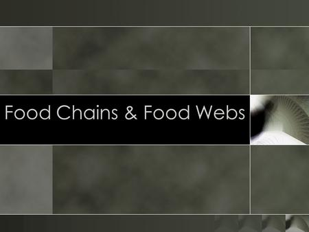 Food Chains & Food Webs. TERMINOLOGY Producer – an organism that makes its own food. Consumer – an organism that eats another organism for food.