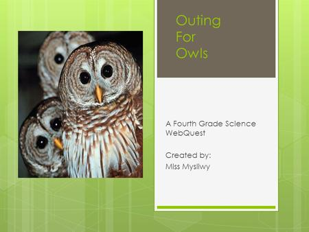 Outing For Owls A Fourth Grade Science WebQuest Created by: Miss Mysliwy.