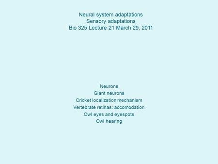 Neural system adaptations Sensory adaptations Bio 325 Lecture 21 March 29, 2011 Neurons Giant neurons Cricket localization mechanism Vertebrate retinas: