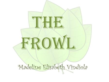 Madeline Elisabeth Vindiola The Frowl. What does it eat ? The Frowl eats a variety of insects, mice, and lizards.
