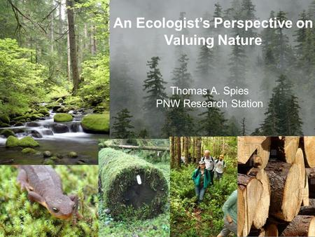 An Ecologist's Perspective on Valuing Nature Thomas A. Spies PNW Research Station.