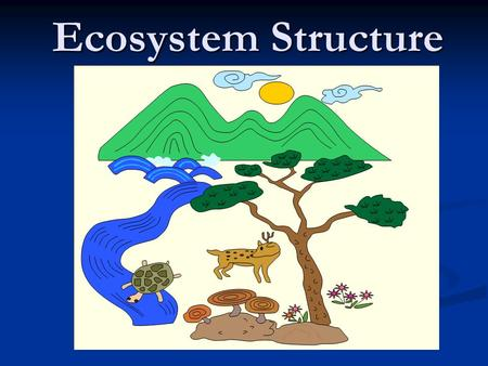 Ecosystem Structure. What is an ecosystem? Do you remember?
