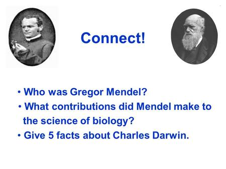 What contributions did Mendel make to