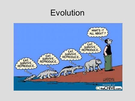Evolution. Definition: Change in a population of organisms over time. Modern Humans Human evolution illustrated on a cladogram.